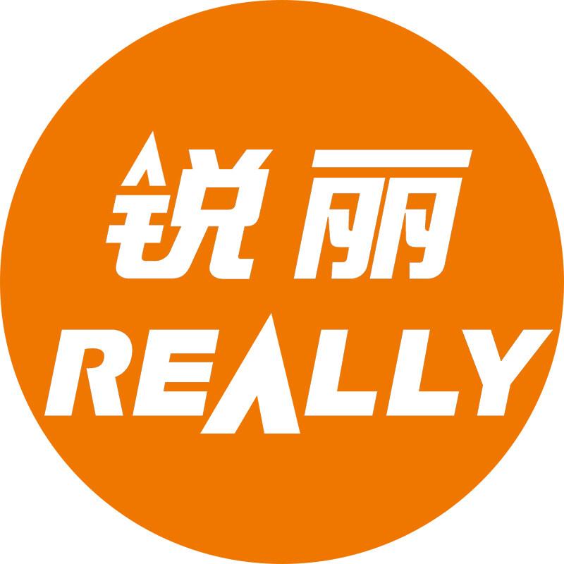 上海銳麗科技股份有限公司