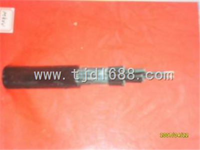 耐高温电缆DJFPV耐高温计算机电缆