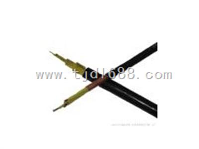 优质的耐高温计算机电缆DJFVP氟塑料计算机电缆