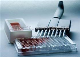 小鼠GATA结合蛋白4试剂盒