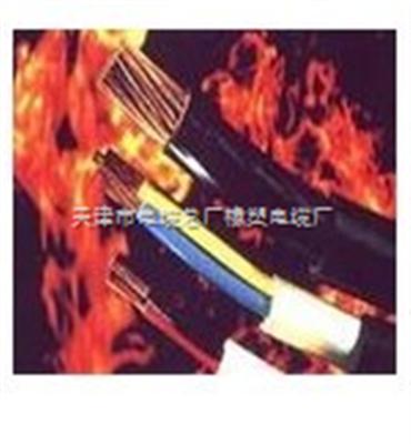 NH-YVFRP 耐火丁晴绝缘和护套铜编织屏蔽电力软电缆