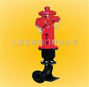 SS100/65-1.6地上式消火栓