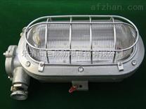 DGC16/127L矿用支架灯,LED支架灯,16WLED支架灯