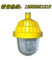 GB8152〔GB8152〕「GB8152」[GB8152] GB8152防爆平台灯