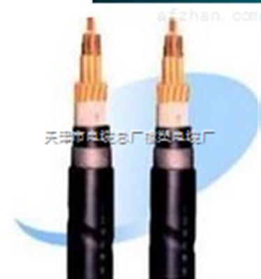MKVVP22电缆,MKVVP22屏蔽铠装电缆
