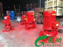 立式单级消防泵安装工况图