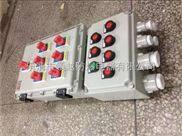化工厂壁挂式防爆照明配电箱