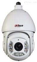 大华1080P网络球形摄像机