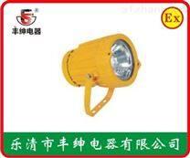 【BTW6216】高亮度防爆投光灯BTW6216