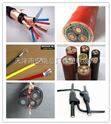 CEFR电缆船用CEFR2*70公司出厂价-正品
