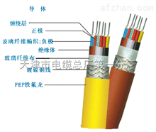 KFV22耐高温电缆