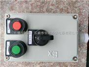 BZC81-A2K防爆操作柱