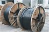 薛经理,PTY22铠装电缆PTY22信号电缆生产厂家