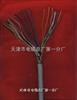 SBYV程控交换机电缆