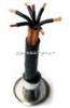 ZRKVVRP阻燃控制电缆ZRKVVRP 多芯控制电缆