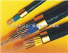DJFFP2电缆厂家直销