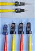 GD-220KV高压交流验电器